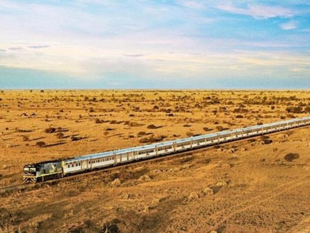 Desert Queen Jaisalmer Jodhpur 60152b6e75667